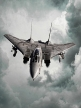 ___________DCS: F-14 TOMACAT OPS