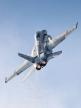 ___________DCS: F/A-18C HORNET OPS